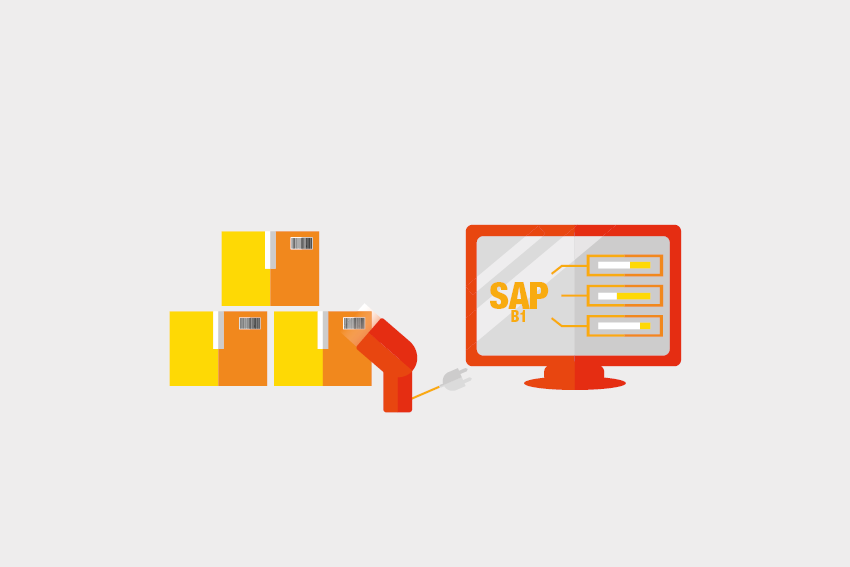 SAP Business One Packterminal