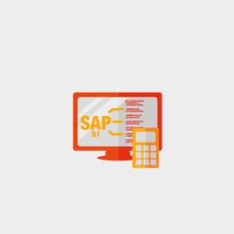 SAP Business One Kalkulation